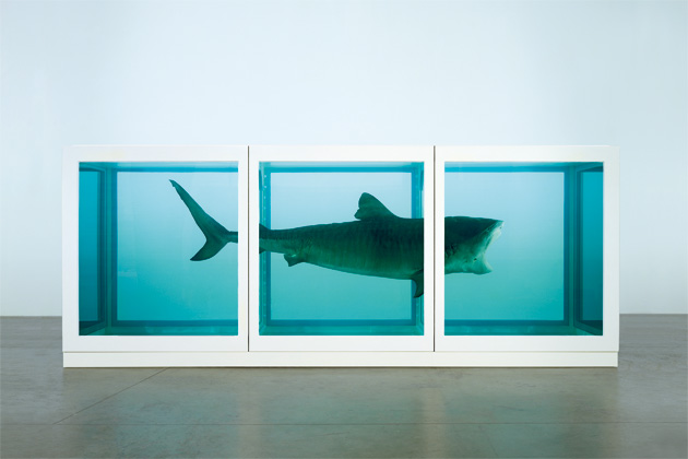 """Damien Hirst, """"The physical impossibility of death in the mind of someone living"""