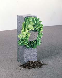 Giovanni Anselmo, Senzo titolo (struttura che mangia) 1968 - © Giovanni Anselmo