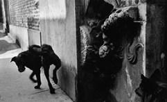 sergio-larrain-photographe-solitaire-expose-a-arles,M115194