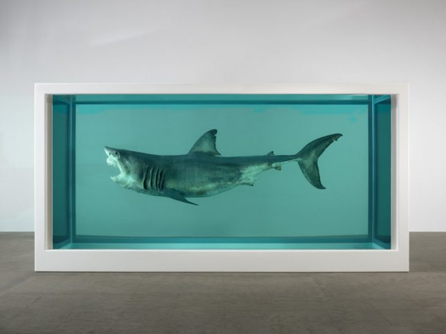 Damien Hirst The Physical Impossibility of Death in the Mind of Someone Living