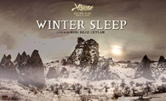 winter sleep artsper