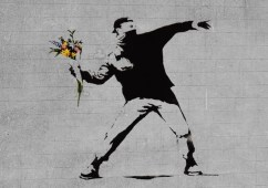 bansky-flower-brick-thrower