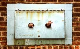 Baby hands -dumbo-dan witz, 1999