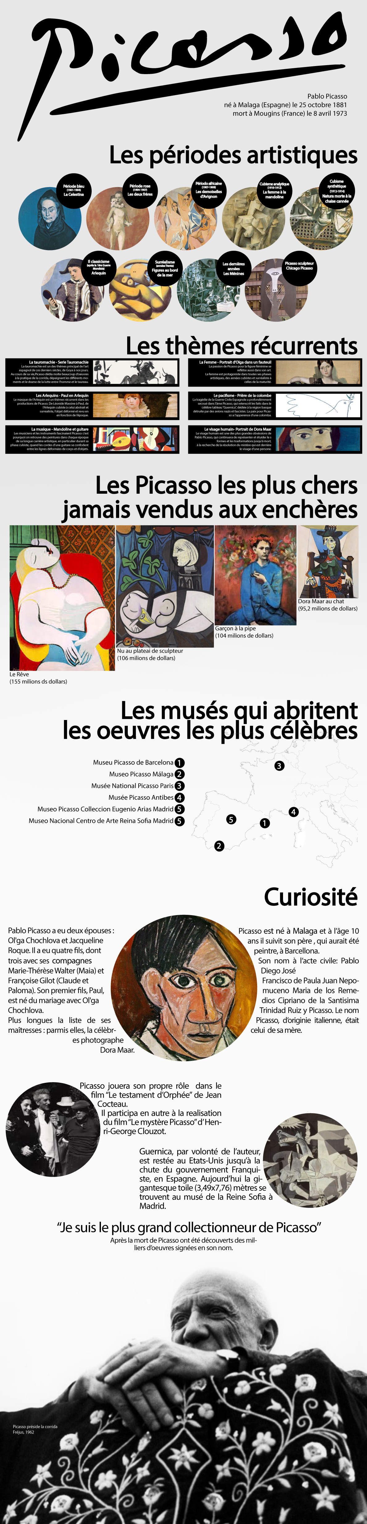 picasso-infographie-fr-s