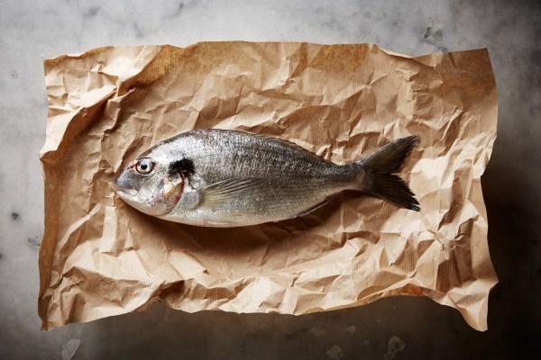 Fish and Kraft, 2014