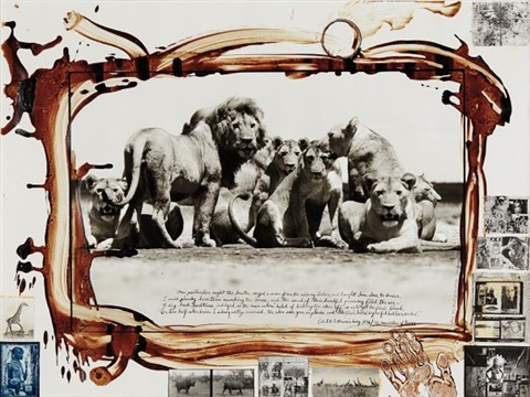 Peter Beard - Lion Pride from The End of the Game, 1976