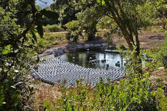 Yayoi Kusama, Narcissus Garden, Domaine du Muy