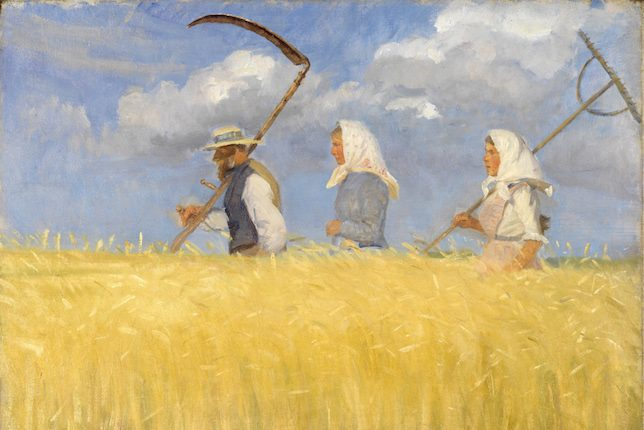 Anna Ancher, Récolte, 1905