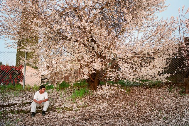 Larry Sultan, Antioch Creek