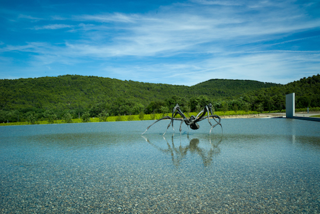 Louise Bourgeois, Crouching Spider, Château La Coste