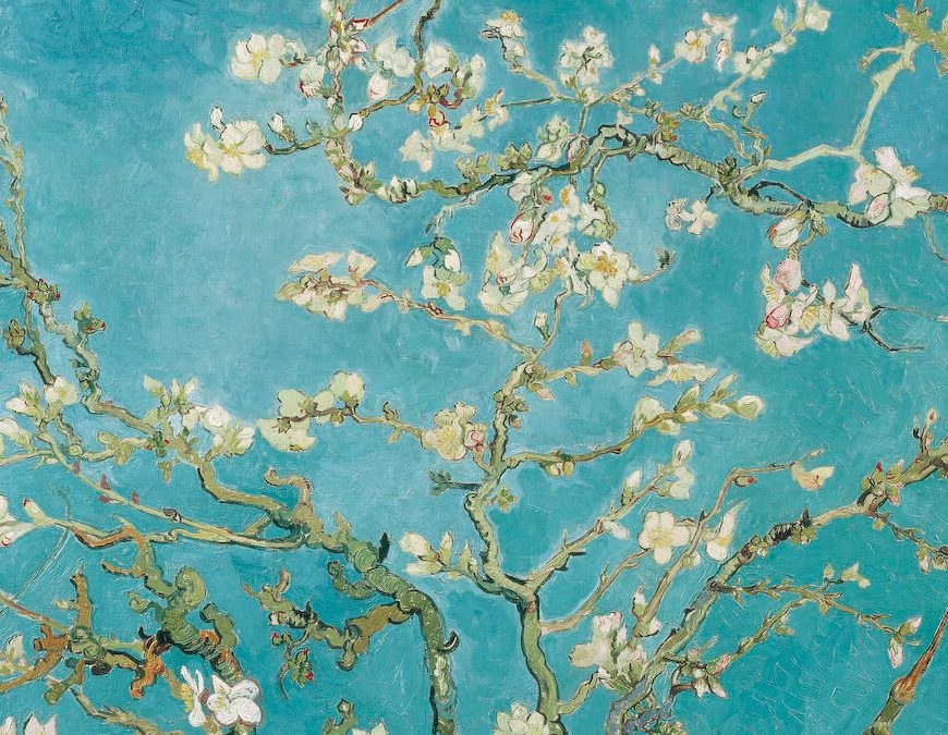 Almond Blossoms, Vincent Van Gogh