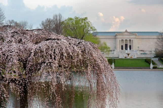 Cleveland Museum of Arts, Cleveland