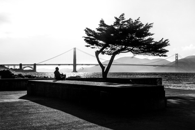 Katerina Christina, Meditation on the Bay [San Francisco, California, USA], 2019