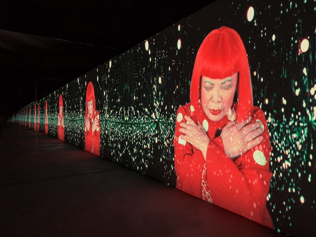 View at Yayoi Kusama: The Vision That We Have Never Seen Is This Spleandour