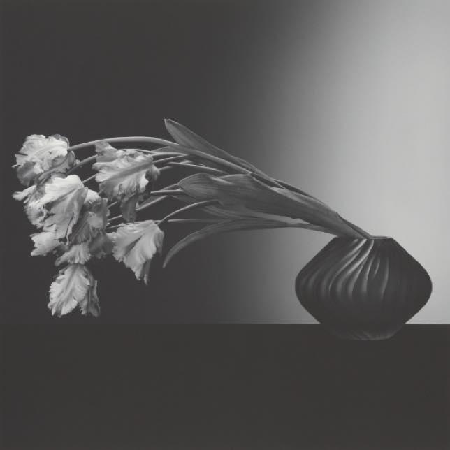 L'attribut alt de cette image est vide, son nom de fichier est RM-flowers.jpg.