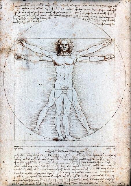 L'homme de Vitruve, Leonard de Vinci, Anatomie, nu Renaissance